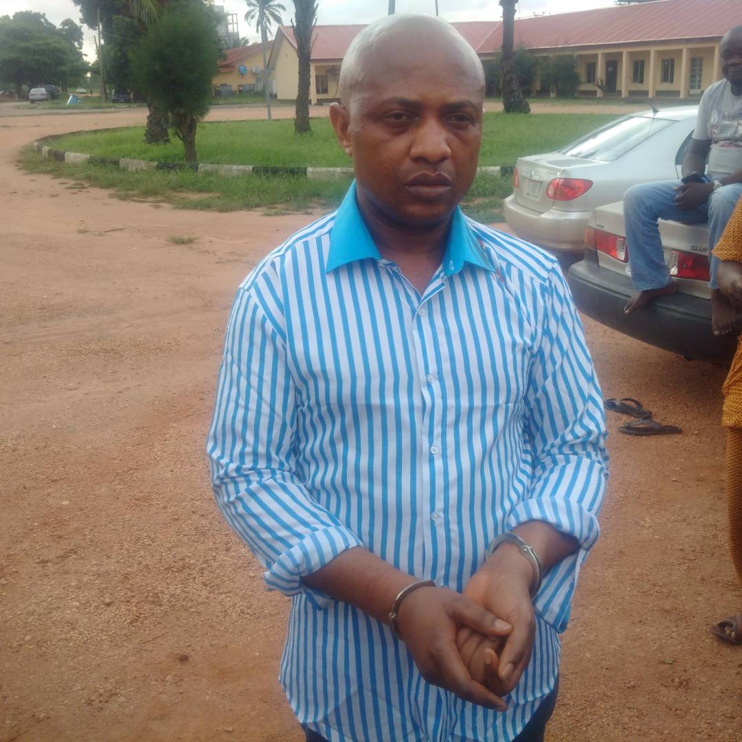Image result for Billionaire Kidnapper, Evans